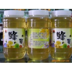 【批量供应】供应优质椴树蜜
