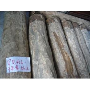 创意征稿(重酬):千年罕见黄杨木王雕刻创意设计征稿