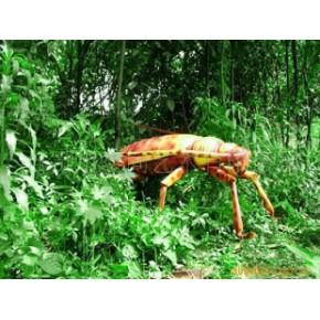 仿真仿生昆虫、玻璃钢工艺品()