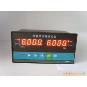 WSAT-D823-011-23/23-HL/HL-2P智能双回路测控仪