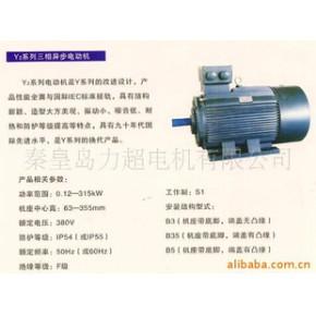 Y2系列三相异步电动机 超电