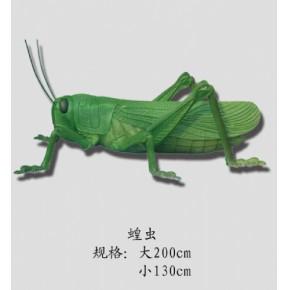 节肢动物蝗虫,生物园,动物模型