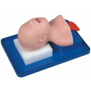 新生儿气管插管训练模型|新生儿气道管理模型|气管插管模型