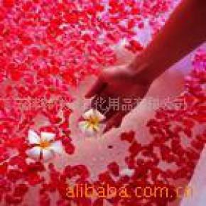 化妆品玫瑰淋浴花瓣 丽媛花典