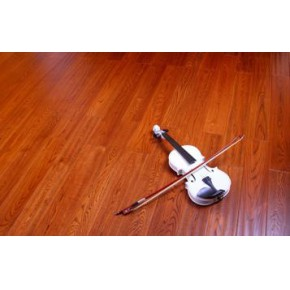 东营标王强化地板 运动级家用地板 好清理地板 东营标王地板