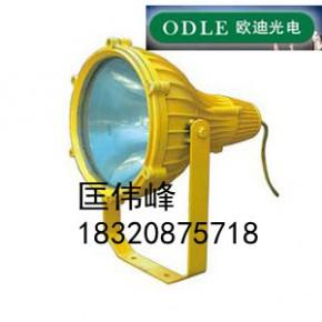 BTC8210防爆投光灯,防爆投光灯,LED防爆灯