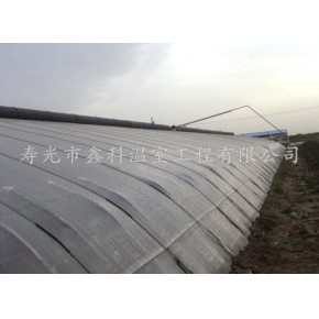 信誉好 冬暖式蔬菜大棚建设基地-寿光鑫科
