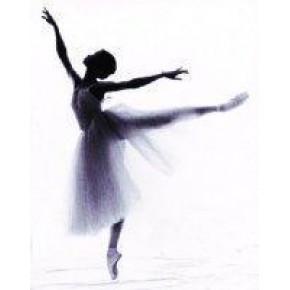青岛专业芭蕾舞培训 青岛芭蕾舞培训学校 红舞裙专业培训
