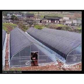 云南温室菜棚|云南温室菜棚安装|专业温室