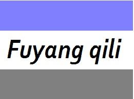 富阳启立机械有限公司