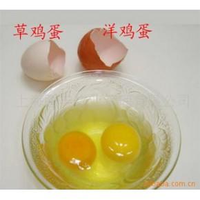 草鸡蛋 上海金山 供应草鸡蛋