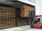 佛山市顺德区巨发木材干燥设备有限公司