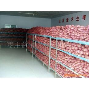 烤地瓜专用红心紫心甜地瓜、红薯