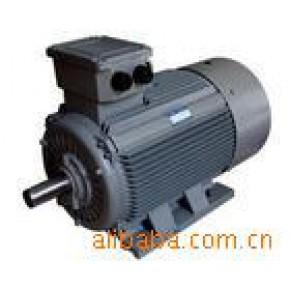 天津明特高效率Y2电动机