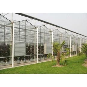 山东潍坊 卖智能温室大棚 多少钱