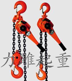 天津力雕起重设备科技有限公司