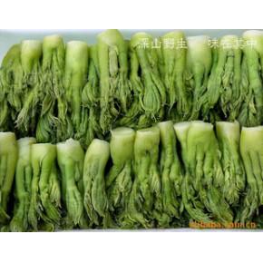 野生菜类 刺老牙 刺嫩芽 山野菜 腌渍野菜