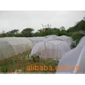 养殖用大棚膜 PE 塑料农、渔制品