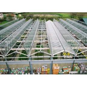 供钢架大棚建设 首选寿光爱农钢架蔬菜大棚