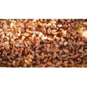 特价供应新疆吐鲁番无核白葡萄干
