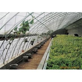 供优质农膜地膜,适用各种农作物覆盖