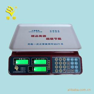 东鲁南衡器供应ACS系列电子计价秤 -仪表
