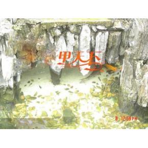 泰州市庭院鱼池水净化工程