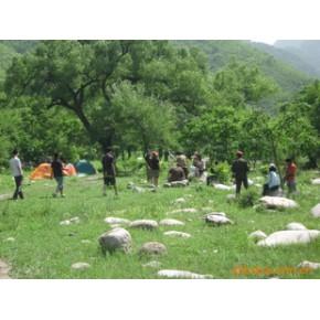 户外活动策划及组织找北京野茫茫文化传播有限公司
