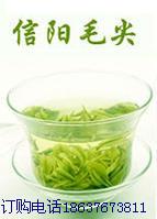 龙潭信阳毛尖茶场合作社