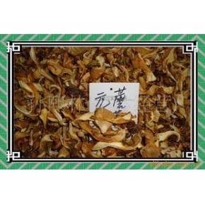 长白山土特产/蘑茹/野生蘑菇/冻蘑/元蘑