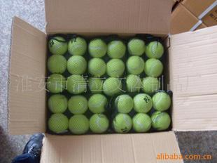 【网球球,乒乓球,排球。体育用品,工艺品清立】沙滩记录表填写