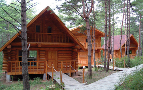 员工到外地考察学习前沿的木屋设计理念和工艺做法