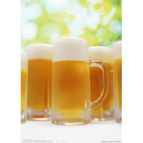 特制手工酿造啤酒 让你喝到好 啤酒节上好啤酒就选海博信达