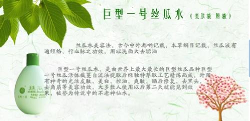 深圳市广臣起重设备有限公司