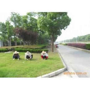 提供 绿化 养护 服务