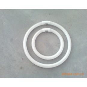 生产物美价廉的热卖中环型节能灯管