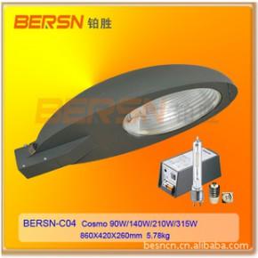 BERSN-C04 高效节能路灯灯具