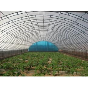 寿光爱农承建现代 连栋温室建设,成本低
