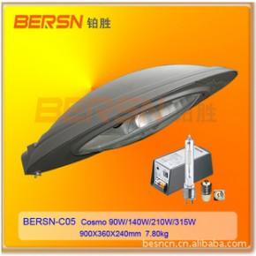 高效节能路灯灯具 BERSN-C05