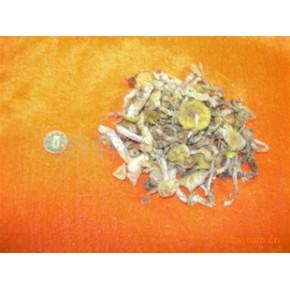 东北野生小黄蘑(纯绿色食品)二等