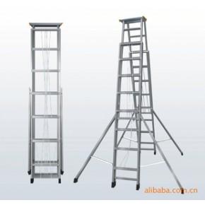 专业提供 梯子 XT-AA22S工程梯 质量好,