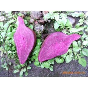 紫甘薯富含花青素有较高的食用和药用价值,纯天然产品