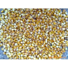 玉米 报名