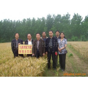 长期供应优质1+1换田喜地配方肥 化肥 肥料