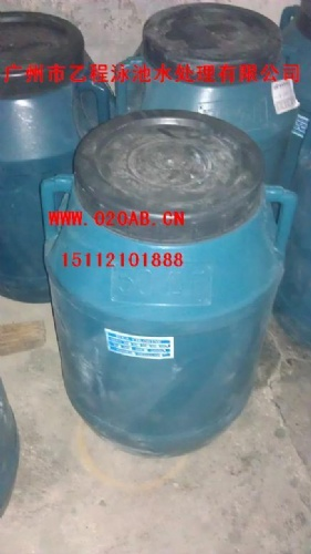氯气丸消毒片2克速溶型