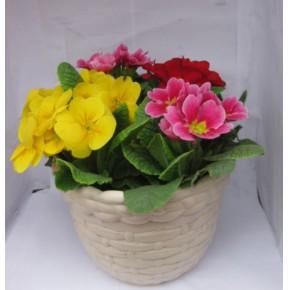 西安花卉批发