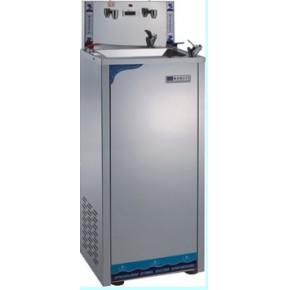 双龙头冰热不锈钢饮水机