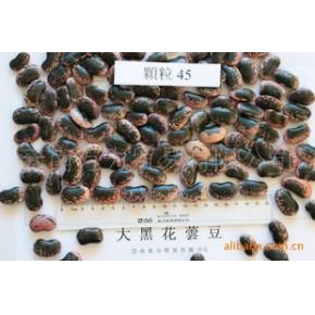 大黑花芸豆 45粒/100克