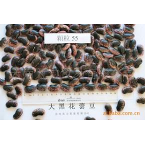 大黑花芸豆 55粒/100克