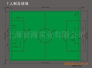 【标准七人制足球场画线 天然草坪足球场画线